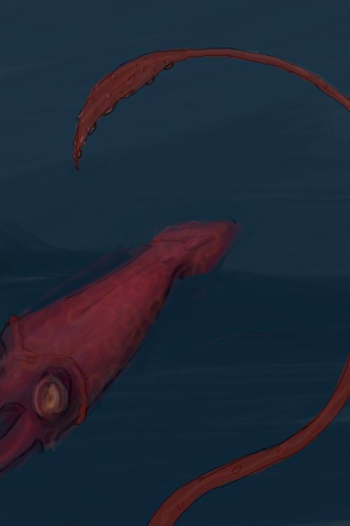 GiantSquid2
