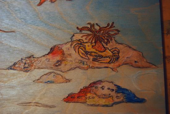 Mermaid-detail2-DISP