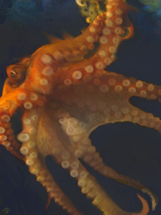 Octopus-DISP-650