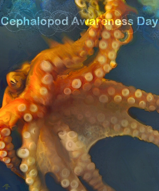 OctopusCJH-CAD2011