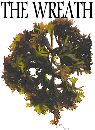 Wreath_coverconceptwreath_1