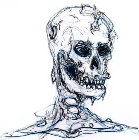 Skull_sketch_by_the0phrastus