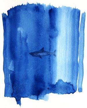 Shark_doodle_by_the0phrastus_3