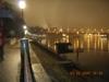 Rhinenight