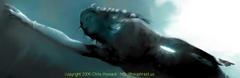 Seabornchrishowardfdetail_1